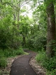 Hawthorne Hill Nature Center Trail.jpg