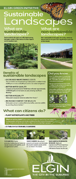 Sustainable Landscapes Thumbnail.png