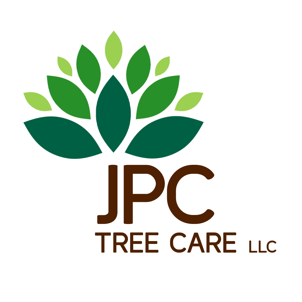 1 STOUT to be largest logo - JCP Tree Care LLC logo