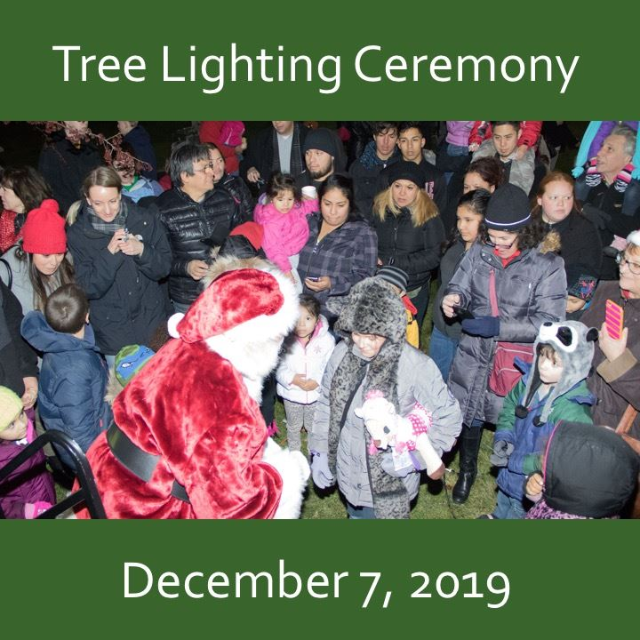 tree lighting ceremony icon-2019. Santa and crowd image