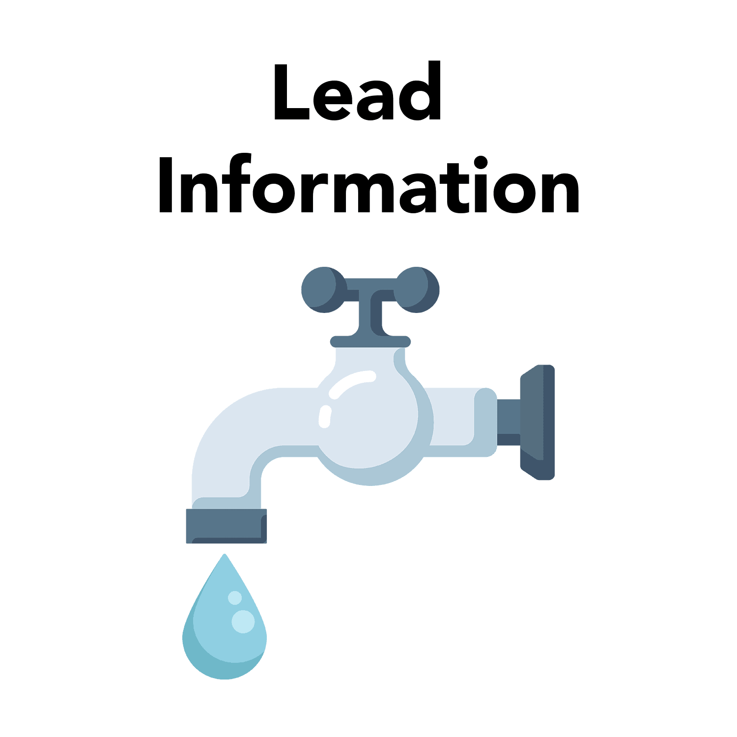Lead Information