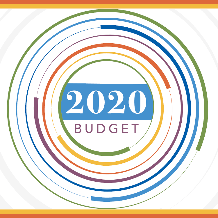 2020 budget square- multiple colored circles