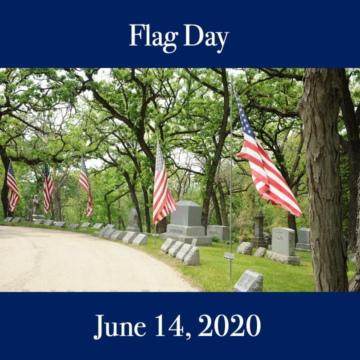 Flag Day icon. American flags