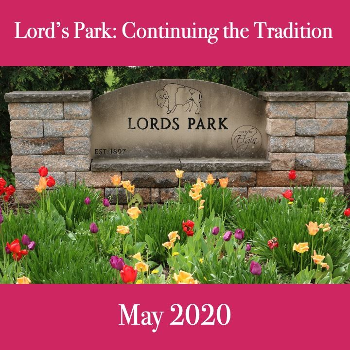 Lords Park 2020. tulips and park entrance sign