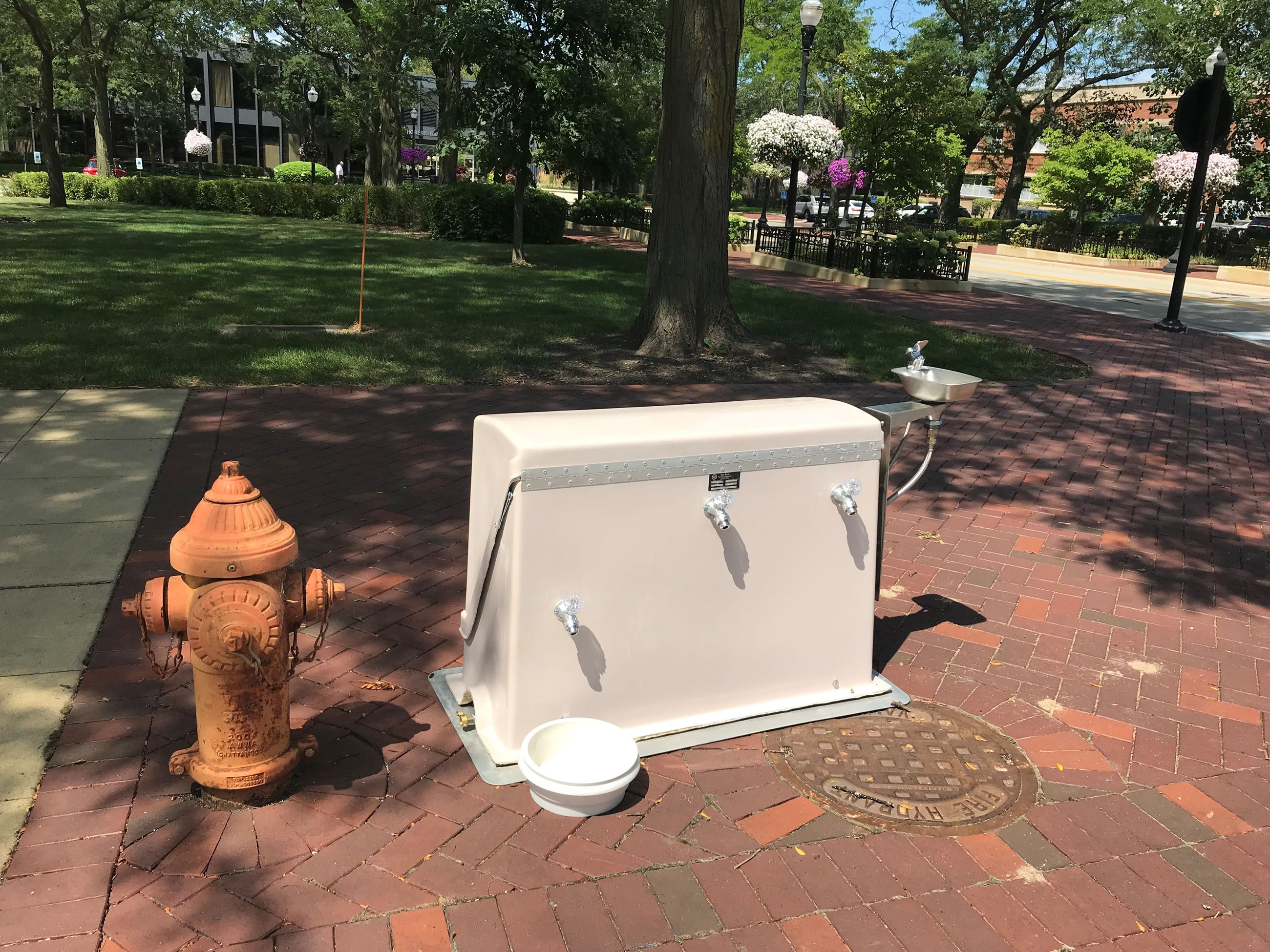 picture of water station in a park hooked up to a fire hydrant
