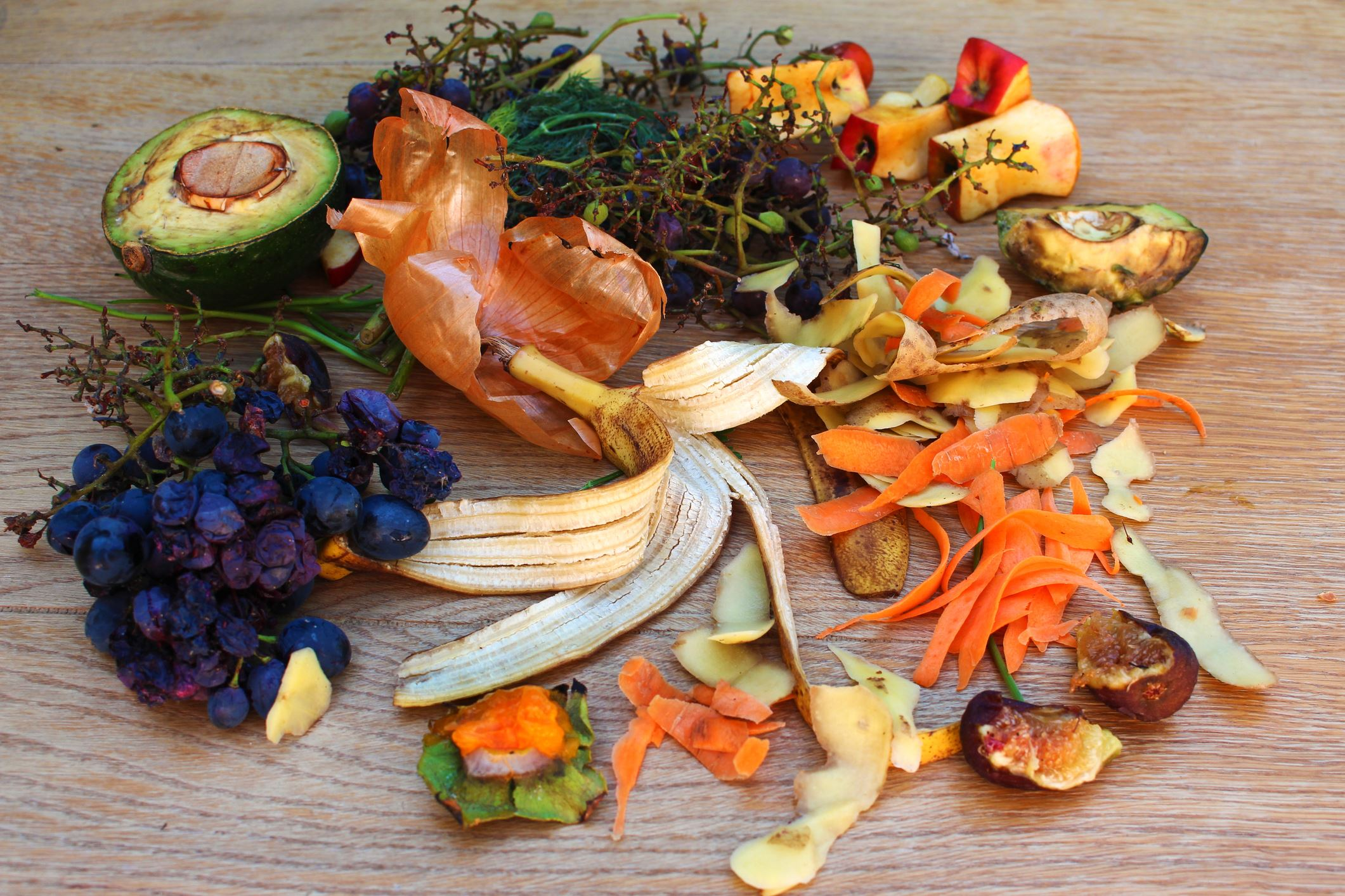 Food scraps for organics collection