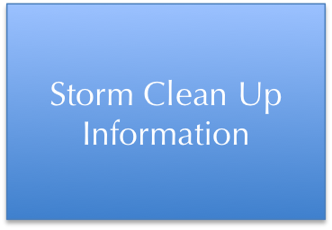 Storm Clean Up