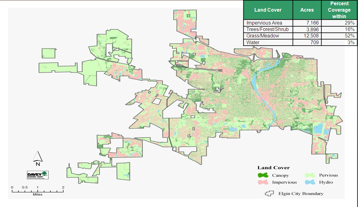 City of Elgin Illinois Official Website Elgins Urban Forest